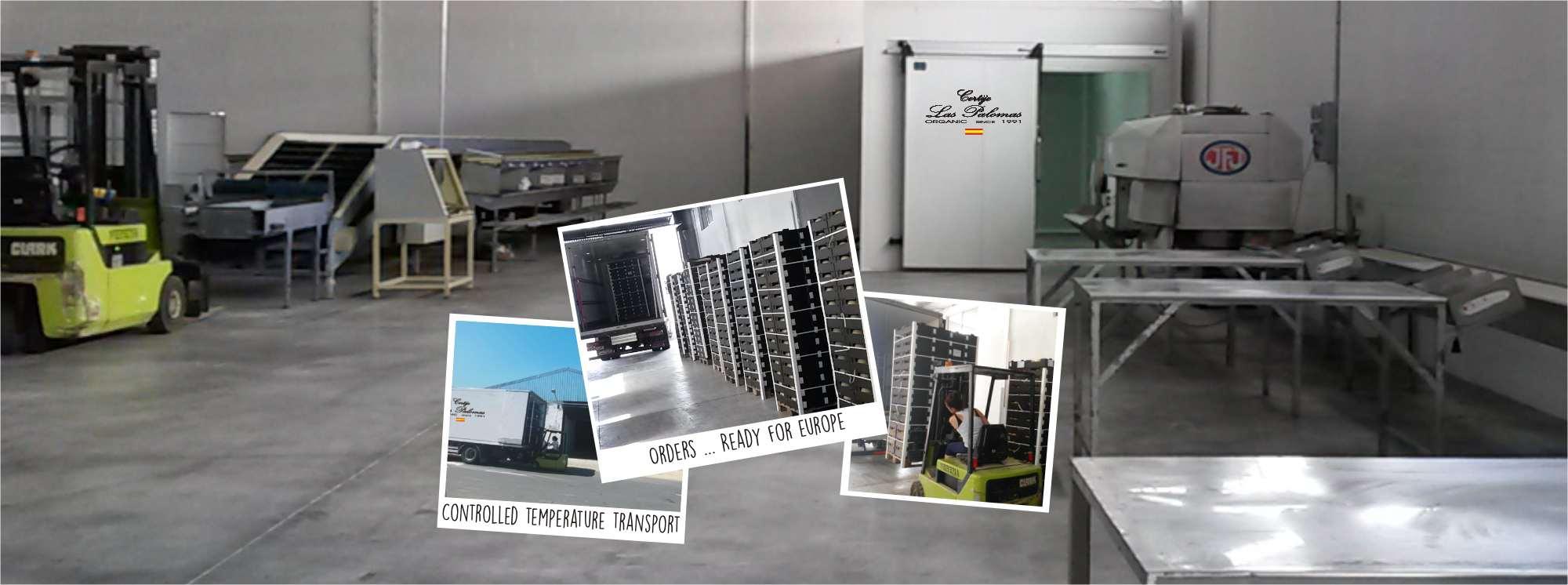 Wij beschikken over een moderne, strategisch gelegen opslag- en verpakkingsruimte