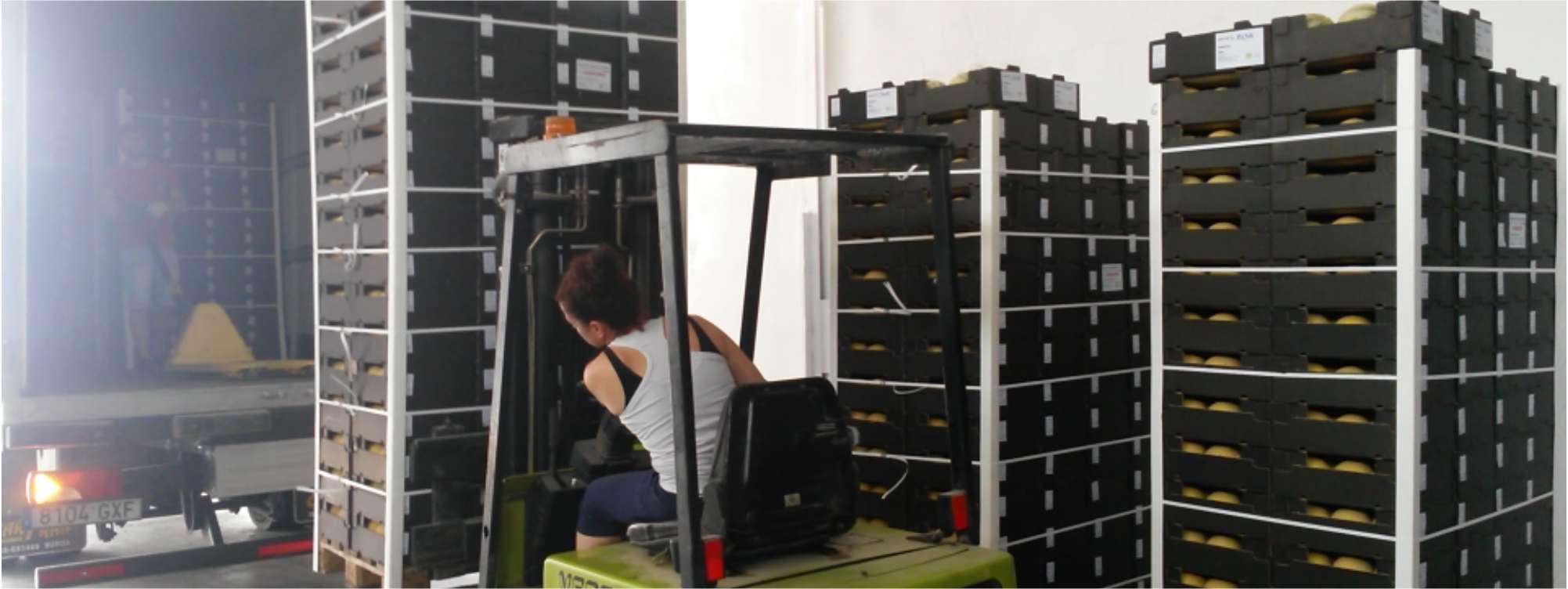 Wij beschikken over de nodige internationale logistieke en -transportcapaciteit